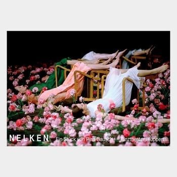 52_Nelken_600x400_180k.jpg